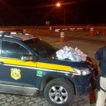 Homem é preso e quase 5 mil pinos de cocaína são apreendidos após perseguição na BR-101, em Casimiro de Abreu